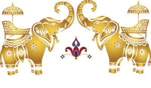 2017 Miami Gala India Page Logo