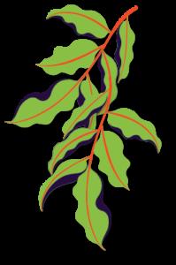 Plant Left
