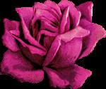 Flower 2 Reversed