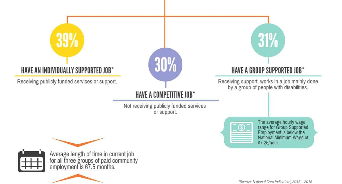 Best Buddies: Jobs Stats Inforgraphic 2