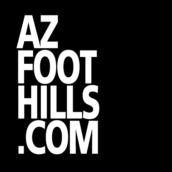 Help Best Buddies Arizona Win Best Annual Gala!