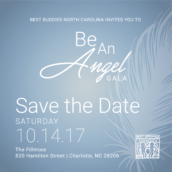2017 Be An Angel Gala