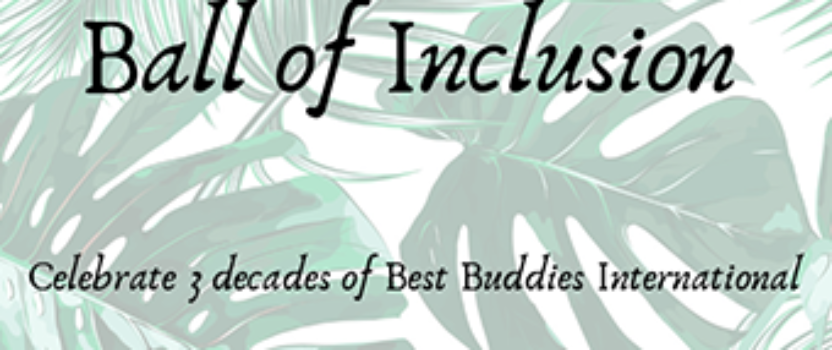30th Anniversary Ball of Inclusion