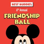 6th Annual Friendship Ball