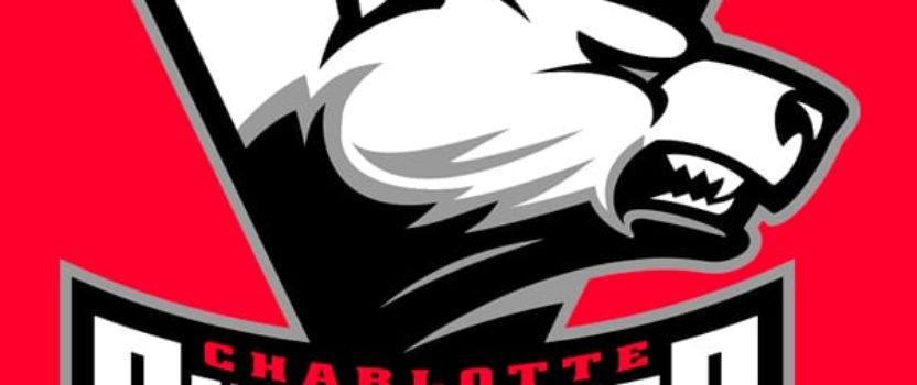 Charlotte Checkers Game
