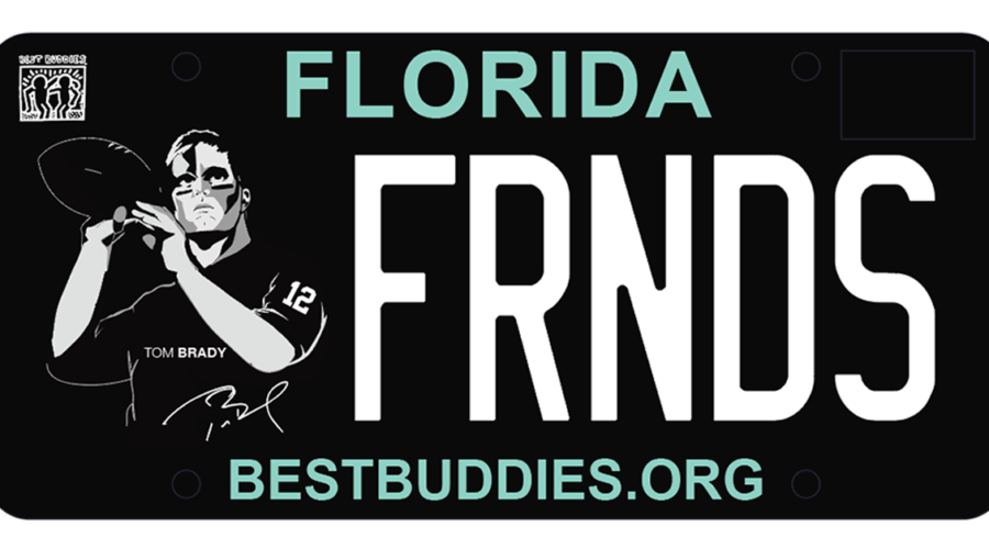 Best Buddies Specialty License Plate
