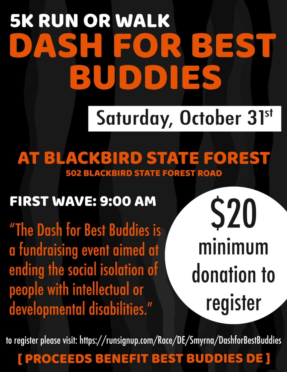 Dash for Best Buddies flyer