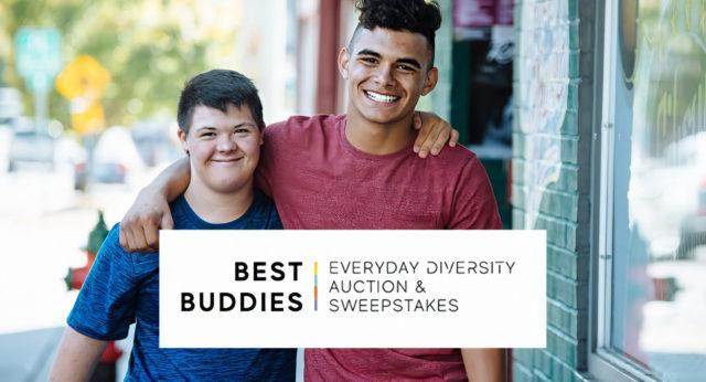 Everyday Diversity Auction & Sweepstakes logo