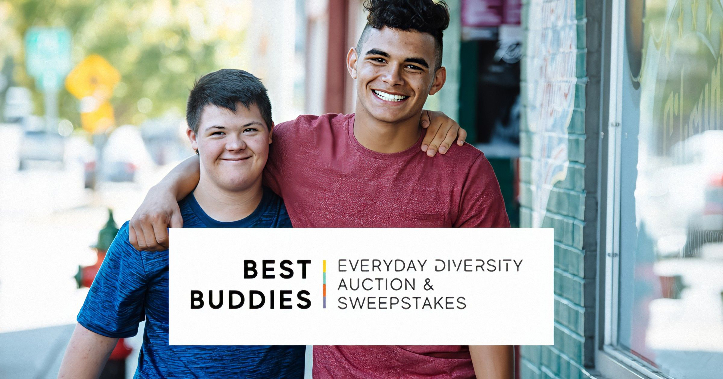 Everyday Diversity Auction & Sweepstakes logo